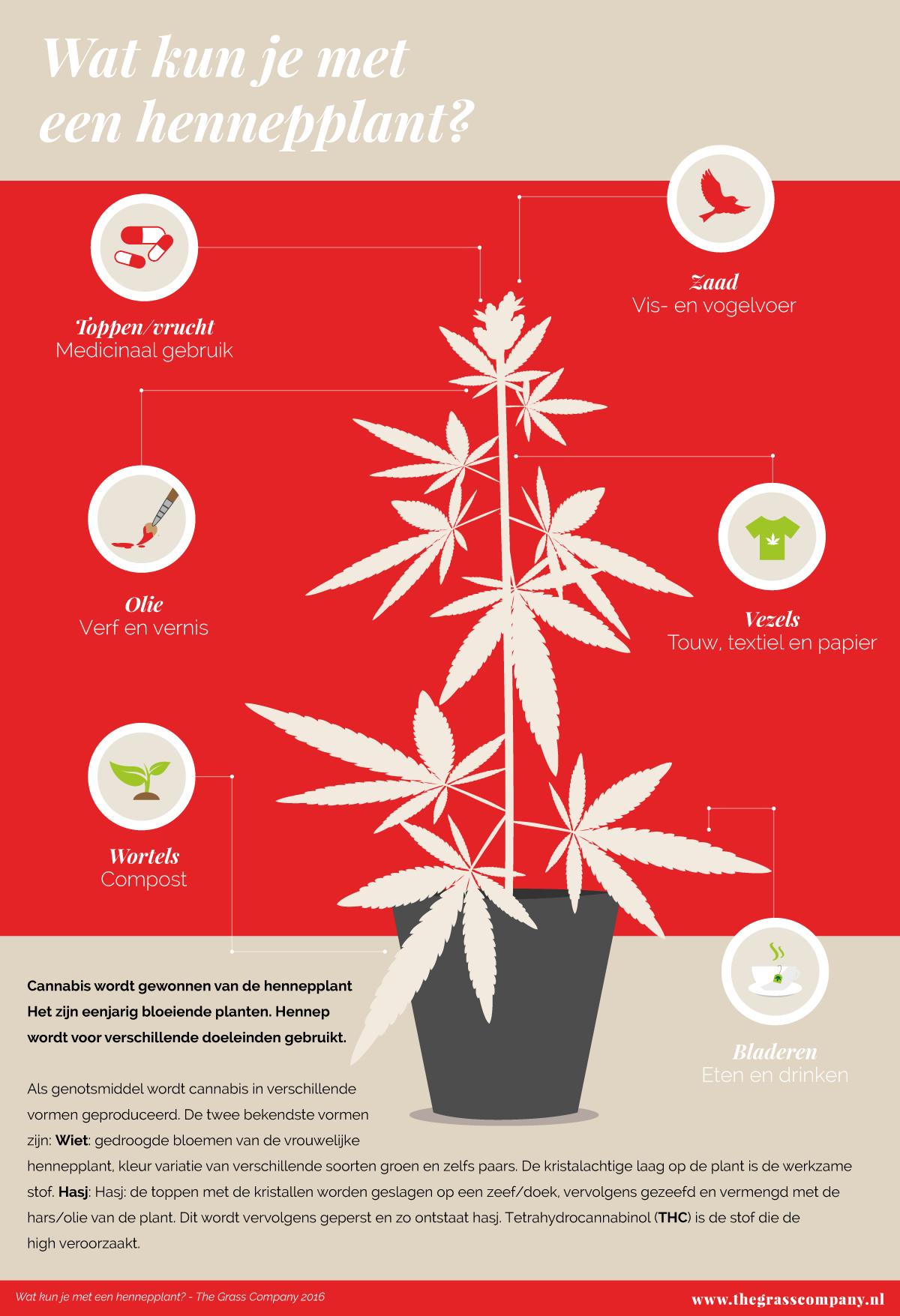 infographic-de_plant_02