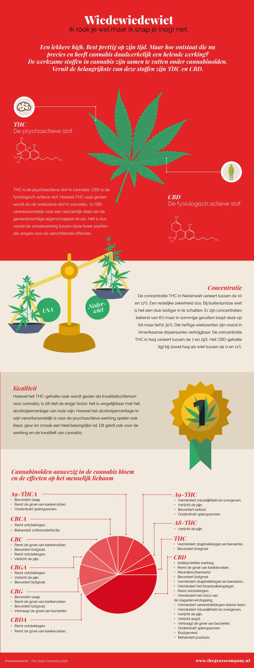 infographic_werking_thc_cbd_04